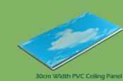 30cm Transfer Printing PVC Ceiling Panels