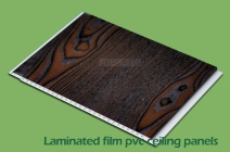 Film Laminated PVC Wall Panel