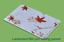 Film Laminated PVC Wall Panels